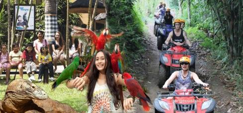 ATV ride and bali bird park tour package gorgeous bali