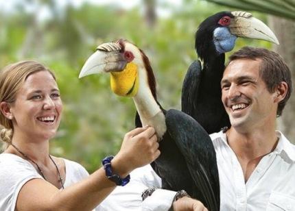 bird park 1 gorgeous bali
