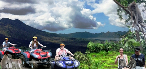 atv ride kintamani tegalalang ubud monkey forest tour, gorgeous bali