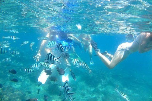 snorkeling at Blue Lagoon